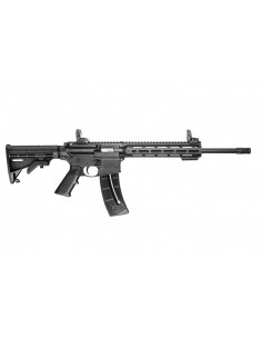 Smith & Wesson M&P 15-22...